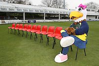 Essex CCC mascot Ellie the Eagle awaits the players for their team photo - Essex CCC Press Day at the Ford County Ground - 07/04/10 - MANDATORY CREDIT: Gavin Ellis/TGSPHOTO - Self billing applies where appropriate - Tel: 0845 094 6026