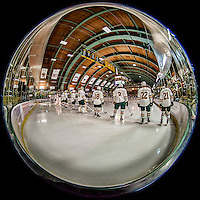 20 January 2017: Members of the University of Vermont Catamounts line up for pre-game introductions prior to a game against the University of Connecticut Huskies at Gutterson Fieldhouse in Burlington, Vermont. The Catamounts held on to defeat the Huskies 5-4 in Hockey East play. Mandatory Credit: Ed Wolfstein Photo *** RAW (NEF) Image File Available ***