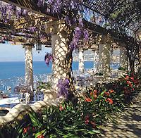 Russo hotel, Sorrento, wisteria
