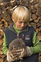 Junge, Kind mit Europäischer Igel auf der Hand, Westigel, Braunbrustigel, Igelschutz, Igel-Schutz, Igelhilfe, Erinaceus europaeus, Western hedgehog, Hérisson d`Europe de l`Ouest