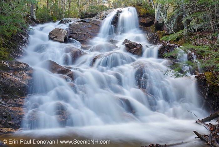 Birch Island Brook Falls along Birch Island Brook in Lincoln, New Hampshire after a rain storm.