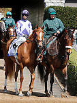 LEXINGTON, KY - APRIL 09: #1 Weep No More, jockey Corey Lanerie coming onto the track before winning the 79th running of the Central Bank Ashland (Grade 1) $500,000 at Keeneland race course for owner Ashbrooke Farm (Glenn Bromagen) and trainer George Arnold II.  April 9, 2016 in Lexington, Kentucky. (Photo by Candice Chavez/Eclipse Sportswire/Getty Images)