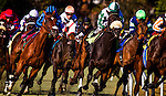 Horses race on the turf on December 14, 2013 at Betfair Hollywood Park in Inglewood, California .(Alex Evers/ Eclipse Sportswire)