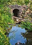 Glen Span Arch, Central Park