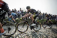 Adrien Petit (FRA/Direct Energie) up the  Koppenberg, <br /> <br /> 103rd Ronde van Vlaanderen 2019<br /> One day race from Antwerp to Oudenaarde (BEL/270km)<br /> <br /> ©kramon