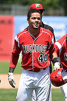 Batavia Muckdogs outfielder Victor Castro (40) after a walk off single in the bottom of the 9th inning during a game against the Lowell Spinners on July 17, 2014 at Dwyer Stadium in Batavia, New York.  Batavia defeated Lowell 4-3.  (Mike Janes/Four Seam Images)