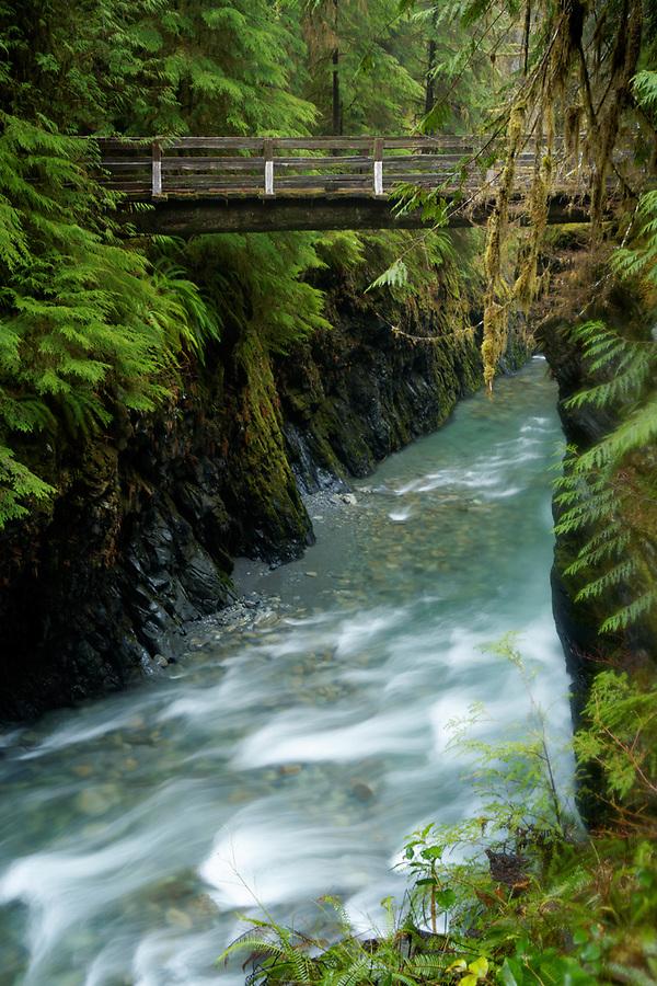 Pony Bridge spans above East Fork Quinault River, Olympic National Park, Washington, USA