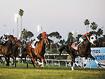 November 27, 2011.Ultimate Eagle ridden by Martin Pedroza takes the lead in the stretch and wins the Hollywood Derby  at Hollywood Park, Inglewood, CA