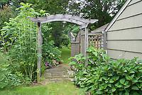 Garden entrance entry, trellis arbor, house, side of house leading to backyard
