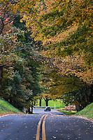 Autumn country road, Stockbridge, Massachusetts, USA