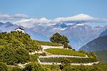 Switzerland, Canton Valais, Salgesch near Leuk: winegrowing at Rhone-Valley | Schweiz, Kanton Wallis, Salgesch bei Leuk: Weinanbau im Rhonetal