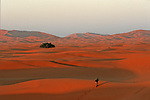 Dunes de l'erg Chebbi au sud de Rissani Grand sud marocain. Maroc