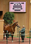 September 10, 2014: Hip #409 Unbridled's Song - Wonder Lady filly consigned by Hill 'n' Dale Sales sold for $500,000 at the Keeneland September Yearling Sale.   Candice Chavez/ESW/CSM