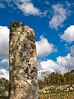 Botrugno (LE) - Salento - Menhir Monte Bianco nelle campagne di Botrugno
