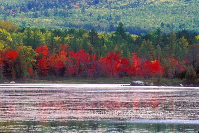 #L7 Autumn At Compass Pond, Maine