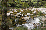 Mossman Gorge, Queensland, Australia; water moving past exposed rocks  in the Mossman river