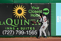 Louisville Cardinals outfielder Ryan Summers (33) crashes into the wall attempting to catch a fly ball during a game against the Ball State Cardinals on February 19, 2017 at Spectrum Field in Clearwater, Florida.  Louisville defeated Ball State 10-4.  (Mike Janes/Four Seam Images)
