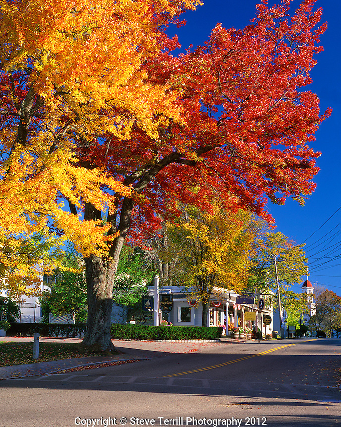Fall trees line State Route 9 in Kennebunkport Maine