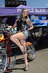 Sample-Biker Babes-Purple Slice and Leather Productions-Sparks 2012