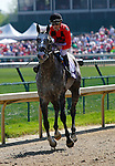 May 01, 2015:    Power Alert and Julien Leparoux win the 21st running of the Turf Sprint Grade 3 $150,000 at Churchill Downs for owner James Covello, AJ Sulted Racing Stable, and Brian Lynch and trainer Brian Lynch.  Candice Chavez/ESW/CSM