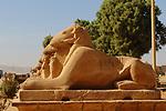 Temples of Karnak, First Pylon , avenue of Ram-Headed Sphinxes