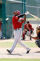 Tyrell Worthington - Arizona Diamondbacks, 2009 Instructional League.Photo by:  Bill Mitchell/Four Seam Images..