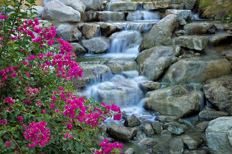 Stream at Desert Willow Golf Resort. Palm Desert, California