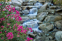 Stream at Desert Willow Golf Resort. Palm Desert, California