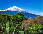 Spanien, Kanarische Inseln, Teneriffa, Blick ueber das Orotavatal zum schneebedeckten Pico del Teide (3.718 m) | Spain, Canary Islands, Tenerife, Orotava Valley and snow covered Pico del Teide (3.718 m)