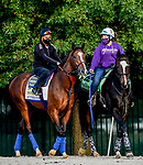 October 1, 2020: Authentic exercises as horses prepare for the Preakness Stakes Week races at Pimlico Race Course in Baltimore, Maryland. Scott Serio/Eclipse Sportswire/CSM
