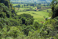 Lush foliage and countryside in the Mogotes hills, Vinales Valley, Cuba.