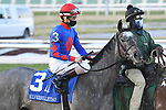 January 16, 2021: Charlie's Penny wins the SilverBulletDay Stakes at Fair Grounds Race Course in New Orleans, Louisiana. Parker Waters/Eclipse Sportswire/CSM
