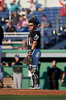 West Virginia Black Bears catcher Elys Escobar (3) during a NY-Penn League game against the Batavia Muckdogs on June 25, 2019 at Dwyer Stadium in Batavia, New York.  Batavia defeated West Virginia 7-3.  (Mike Janes/Four Seam Images)