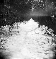 The snowy path. From the Spartus Full Vue Collection