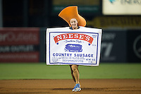 The Neese's Sausage Race takes place between innings of the South Atlantic League game between the Greenville Drive and the Greensboro Grasshoppers at NewBridge Bank Park on August 17, 2015 in Greensboro, North Carolina.  The Drive defeated the Grasshoppers 5-4 in 13 innings.  (Brian Westerholt/Four Seam Images)