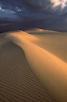 Europe/France/Aquitaine/33/Gironde/Bassin d'Arcachon: La dune du Pilat