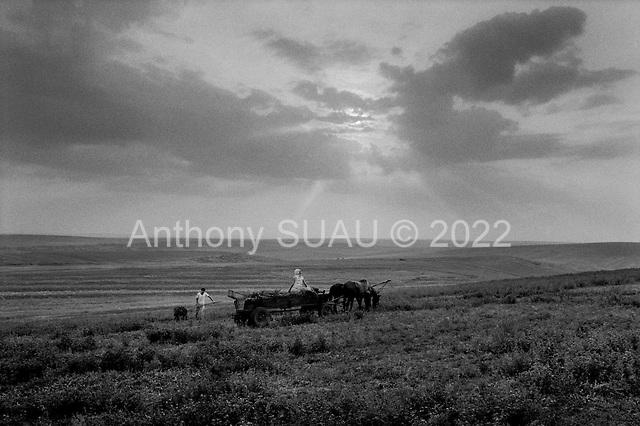 Romania<br /> 1992<br /> Countryside