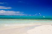 Envol de mouettes sur un îlot de Nouvelle-Calédonie