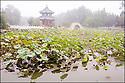 2006- Chine- Lac de Baoding, sur la route de Shanxi.