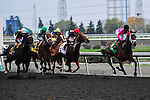 Delegation(5) with Jockey Patrick Husbands aboard.moves through the field to win the Durham Cup Stakes (Grade III) at Pattison Canadian International  in Toronto, Canada on October 14, 2012.