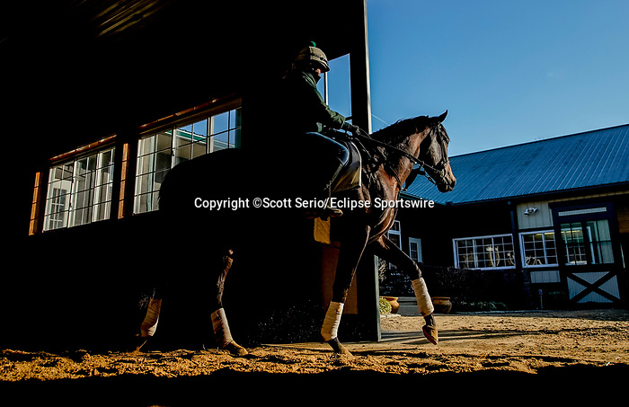 March 18, 2020 : A horse heads to the track to exercise from the Fair Hill Equine Therapy Center. Life goes on at Fair Hill Training Center in Fair Hill, Maryland. While no spectators are allowed at any race facility in the United States, or the world essentially, during the coronavirus pandemic, the horses still need to train and exercise. The Fair Hill Trainer Center in Cecil County in Maryland is still open for business and the equine athletes remain active through the COVID-19 crisis. Scott Serio/Eclipse Sportswire/CSM