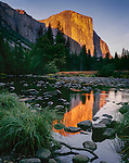 Yosemite National Park, CA: Evening light on El Captian (7042 ft) with reflections on the Merced River from Valley View
