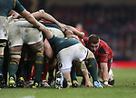 Wales flanker Dan Lydiate scrums down.<br /> <br /> 2013 Dove Men Series<br /> Wales v South Africa<br /> Millennium Stadium<br /> 09.11.13<br /> ©Steve Pope-Sportingwales