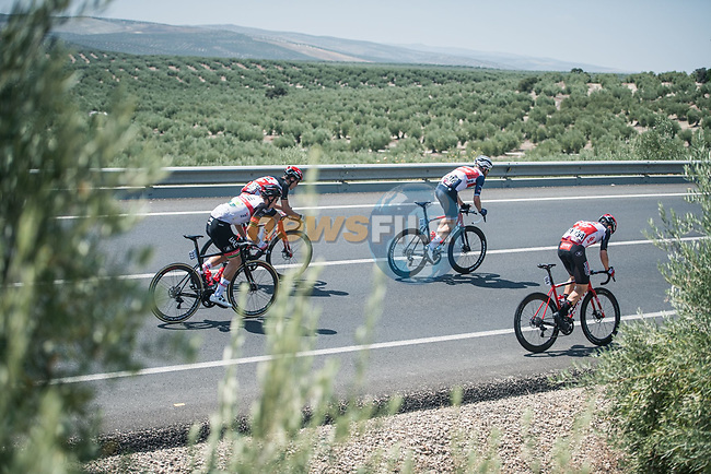The peloton during Stage 12 of La Vuelta d'Espana 2021, running 175km from Jaén to Córdoba, Spain. 26th August 2021. <br /> Picture: Unipublic/Charly Lopez | Cyclefile<br /> <br /> All photos usage must carry mandatory copyright credit (© Cyclefile | Charly Lopez/Unipublic)