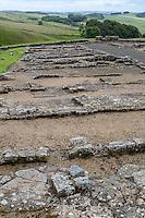 Northumberland,  England, UK.  Foundations of Barracks Buildings, Housesteads Roman Fort (Vercovicium).