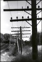 Telephone poles along roadway<br />