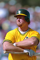 PHOENIX, AZ - Mark McGwire of the Oakland Athletics bats during a spring training game against the San Francisco Giants at Phoenix Municipal Stadium in Phoenix, Arizona in 1992. Photo by Brad Mangin