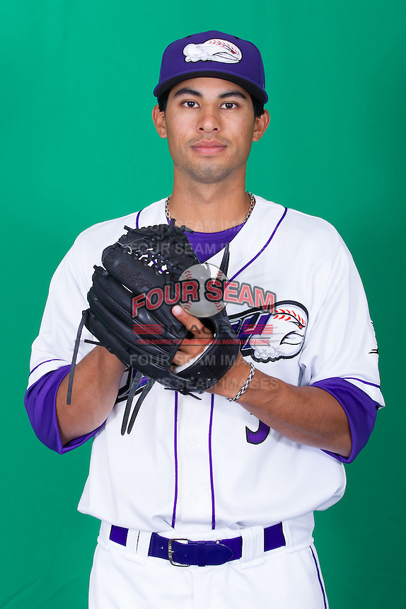 poses for photos during Media Day at BB&T Ballpark on April 1, 2014 in Winston-Salem, North Carolina (Brian Westerholt/Four Seam Images)