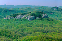 Looking Glass Rock in Pisgah National Forest<br />   from the Blue Ridge Parkway near Tunnel Gap<br /> Blue Ridge Mountains<br /> North Carolina