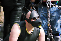 A man in a leather dog's outfit in this year's Pride Parade in the centre of Cardiff, Wales, UK. Sayurday 26 August 2017